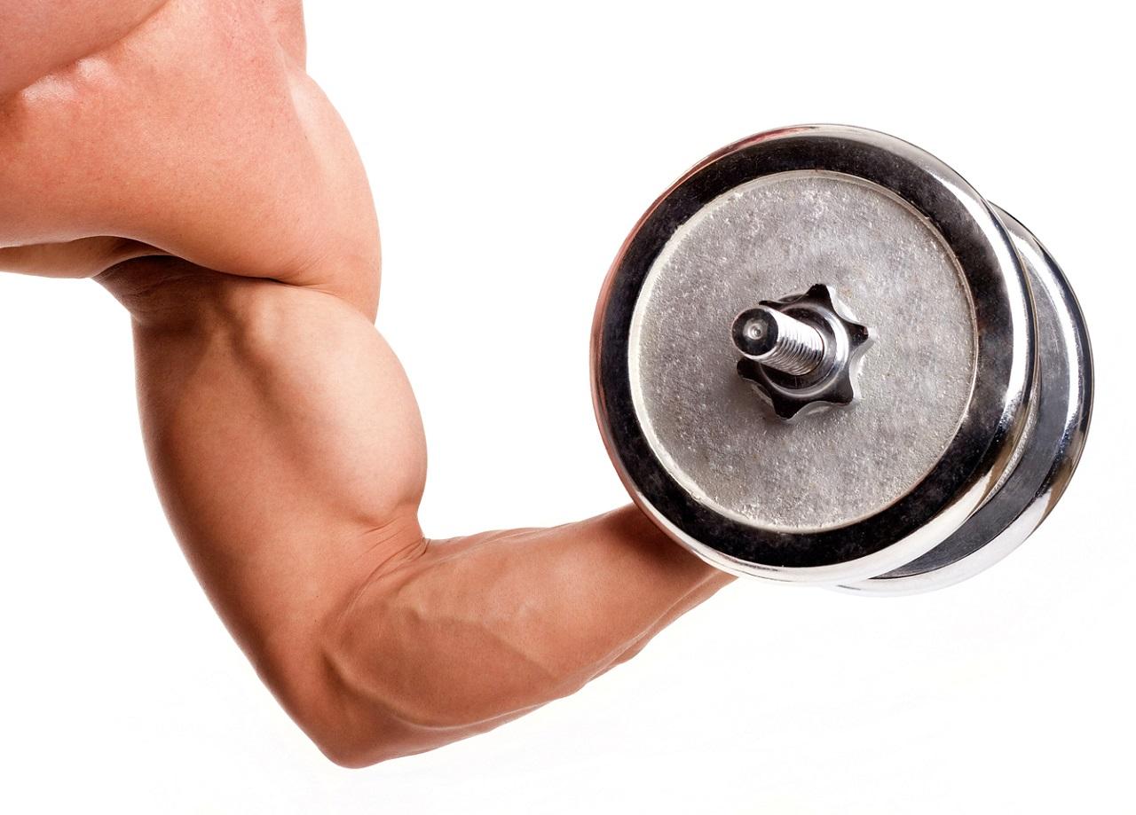 спорт питание для сжигания жира