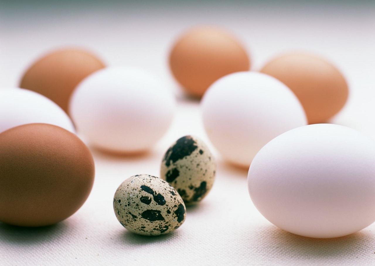 Яйца в правильном питании