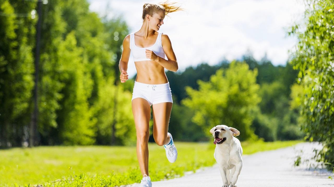 спортивное диетическое питание