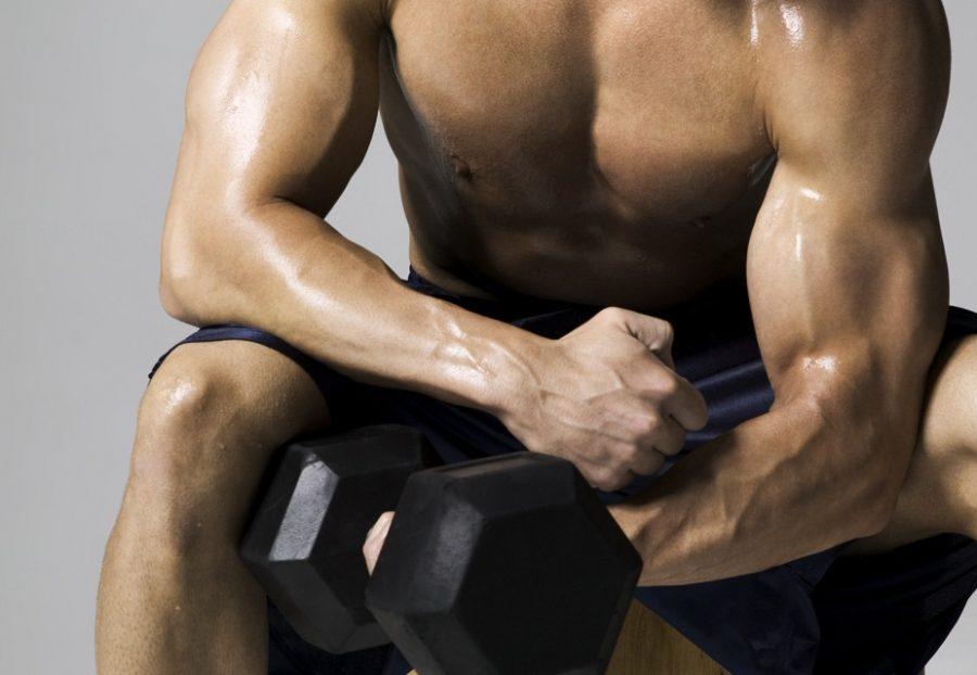 лучше для набора сухой мышечной массы